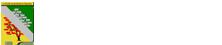 Logo société de généalogie du saguenay